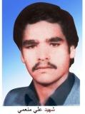 جهادگر شهید علی منعمی